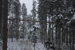 Sumava13_13